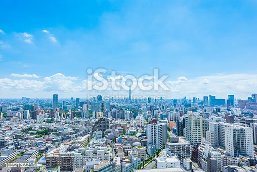 1184122904 istock photo Tokyo city skyline , Japan. 1222132211