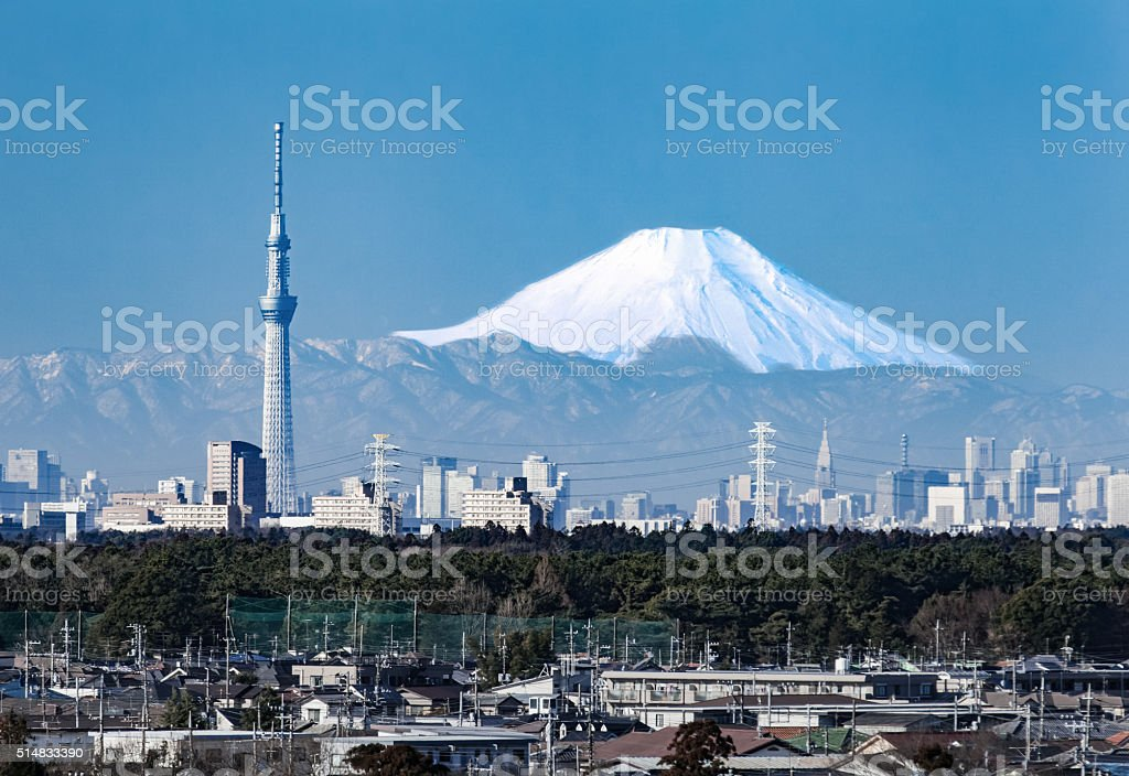 Tokyo city view and mountain fuji in winter stock photo