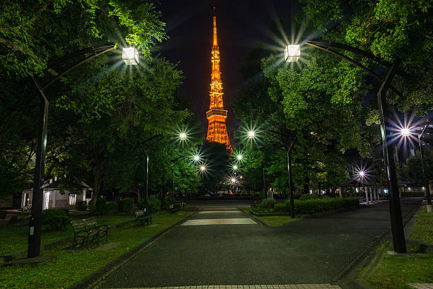 Tokyo city view and Tokyo landmark Tokyo Tower in evening. – Foto