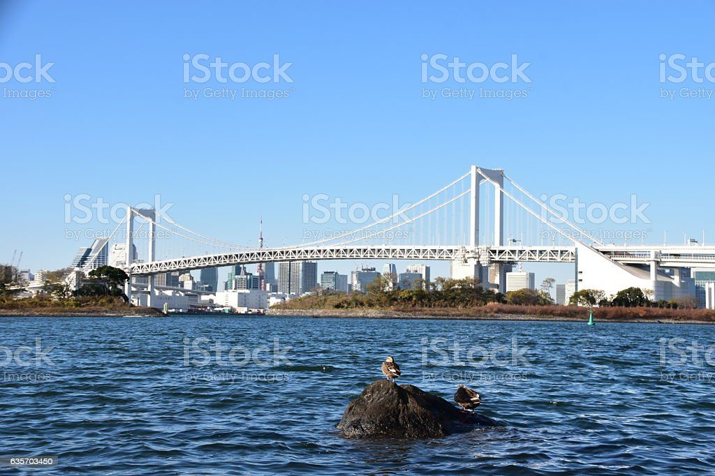 Tokyo city view daytime royalty-free stock photo