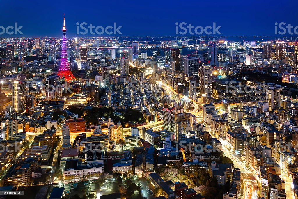 Tokyo city view visible on the horizon stock photo