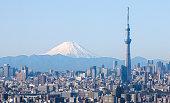 東京の街の眺め、東京スカイツリーと山藤