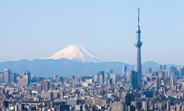 東京の街の眺め、東京スカイツリーと山藤 - 富士山 ストックフォトと画像