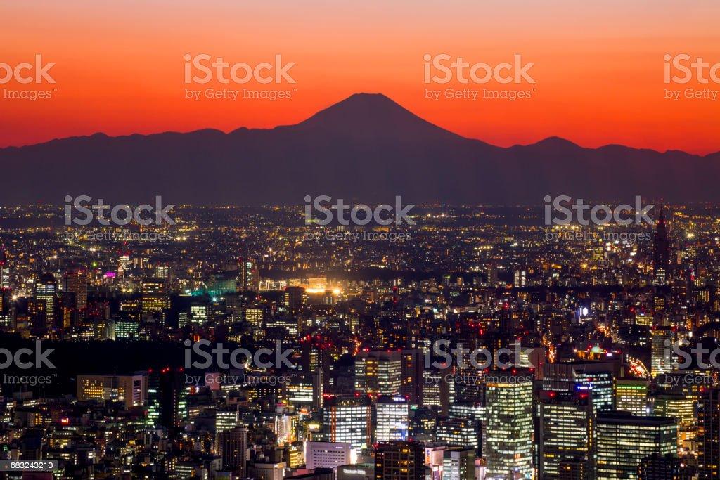 Tokyo cityscape and Mt Fuji stock photo
