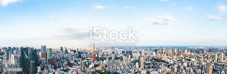 istock Tokyo cityscape. Panorama view. 1019164390
