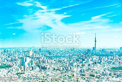 istock Tokyo Cityscape 1184122904