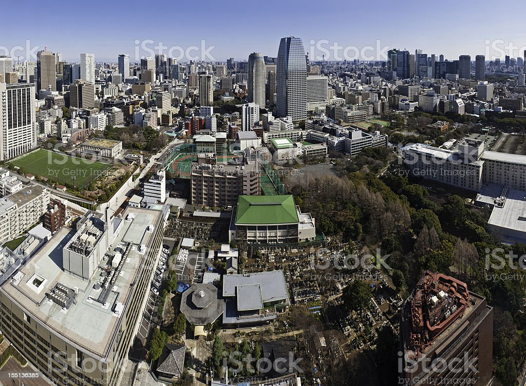 Tokyo crowded cityscape skyscraper vista Japan royalty-free stock photo