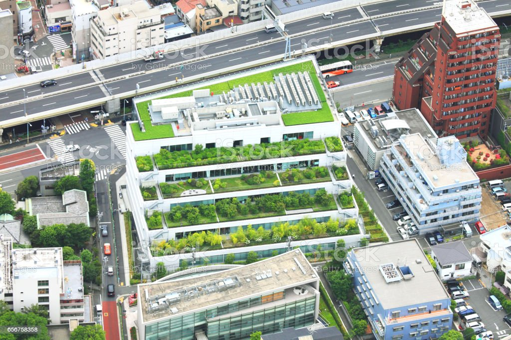 Tokyo High Rise Building Rooftop Garden Royalty Free Stock Photo