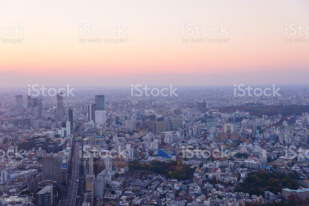 Tokyo in the twilight stock photo