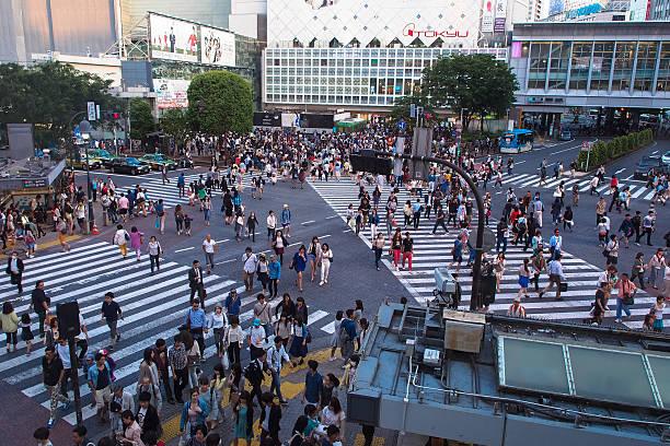 Tokyo Japan Shibuya Crossing foto
