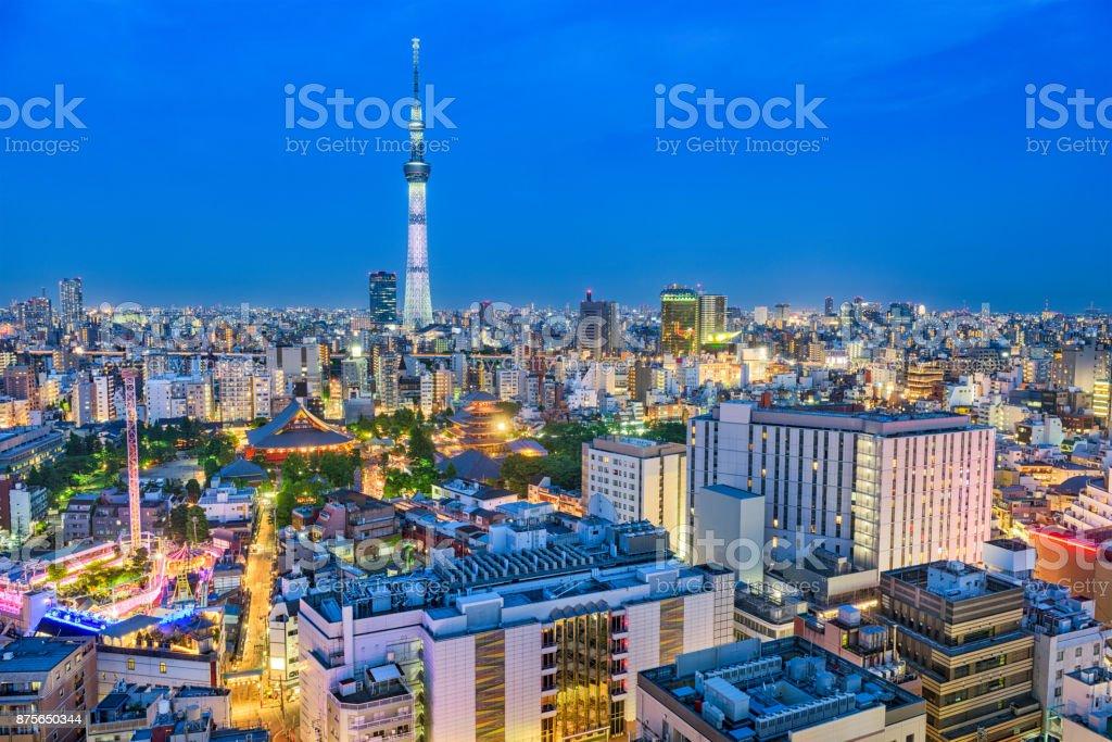 Tokyo, Japan Skyline stock photo