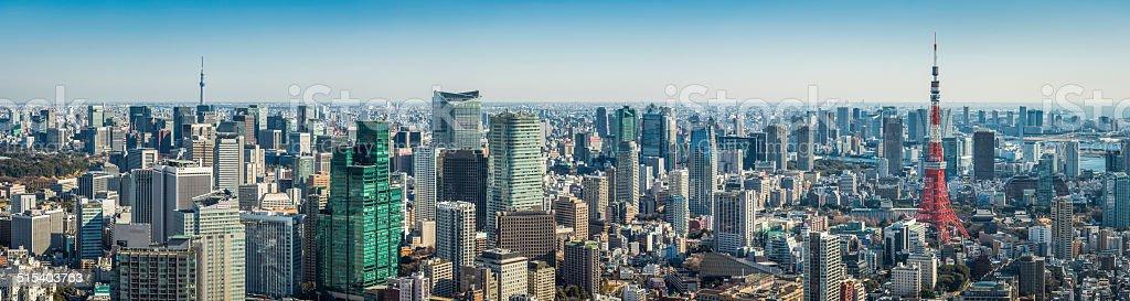 Tokyo landmark cityscape panorama Tokyo Tower Skytree downtown skyscrapers Japan stock photo