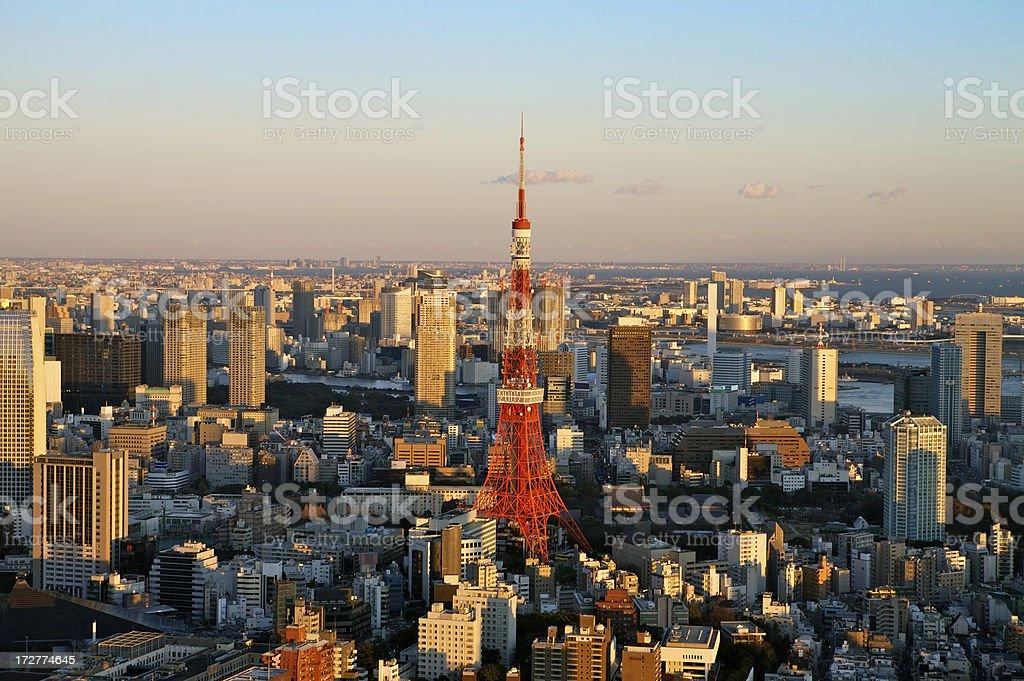 Tokyo landmark near sunset royalty-free stock photo