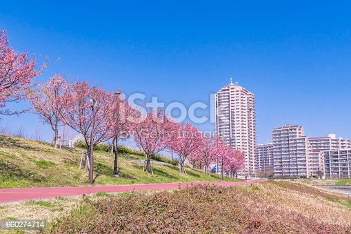 660303034 istock photo Tokyo landscape at spring in Japan (with cherry blossoms) 660274714