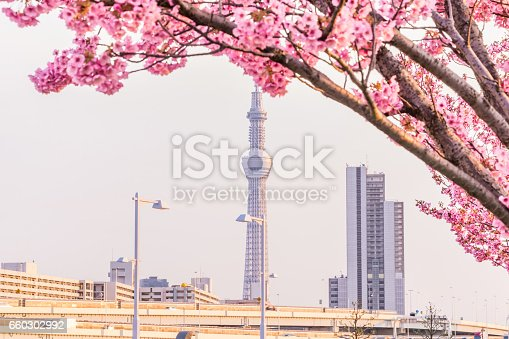 660303034 istock photo Tokyo landscape at spring in Japan (with cherry blossoms) 660302992