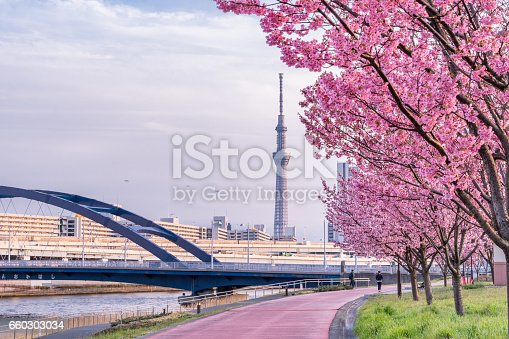 660303034 istock photo Tokyo landscape at spring in Japan (with cherry blossoms) 660303034