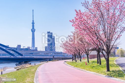 660303034 istock photo Tokyo landscape at spring in Japan (with cherry blossoms) 660303108