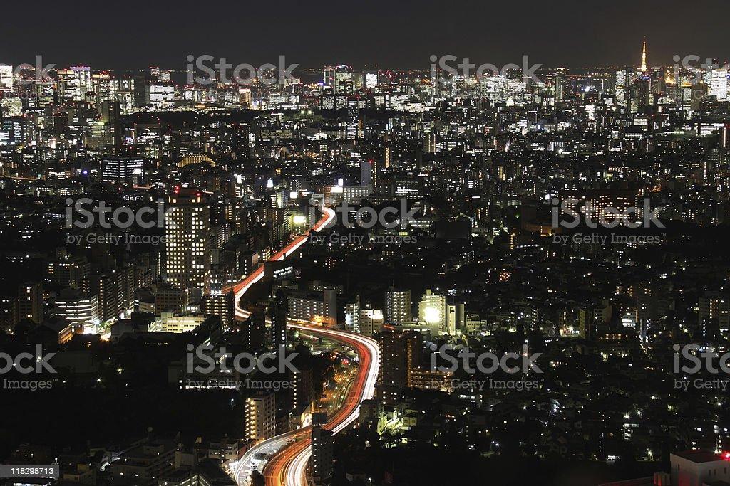 Tokyo night rush hour royalty-free stock photo