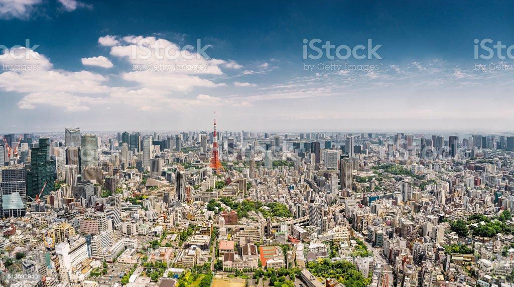 Tokyo Panorama, Japan. stock photo