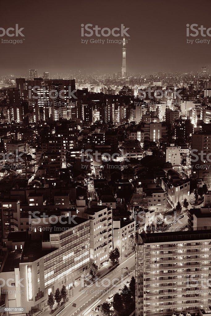 Tokyo rooftop royalty-free stock photo