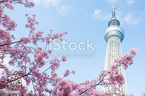 istock Tokyo Sky Tree and cherry blossom during spring at Japan. 1133606482