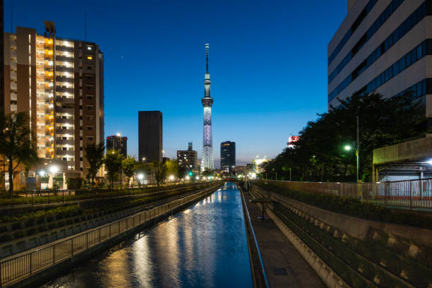 Tokyo Himmel Baumdämmerung in Japan – Foto