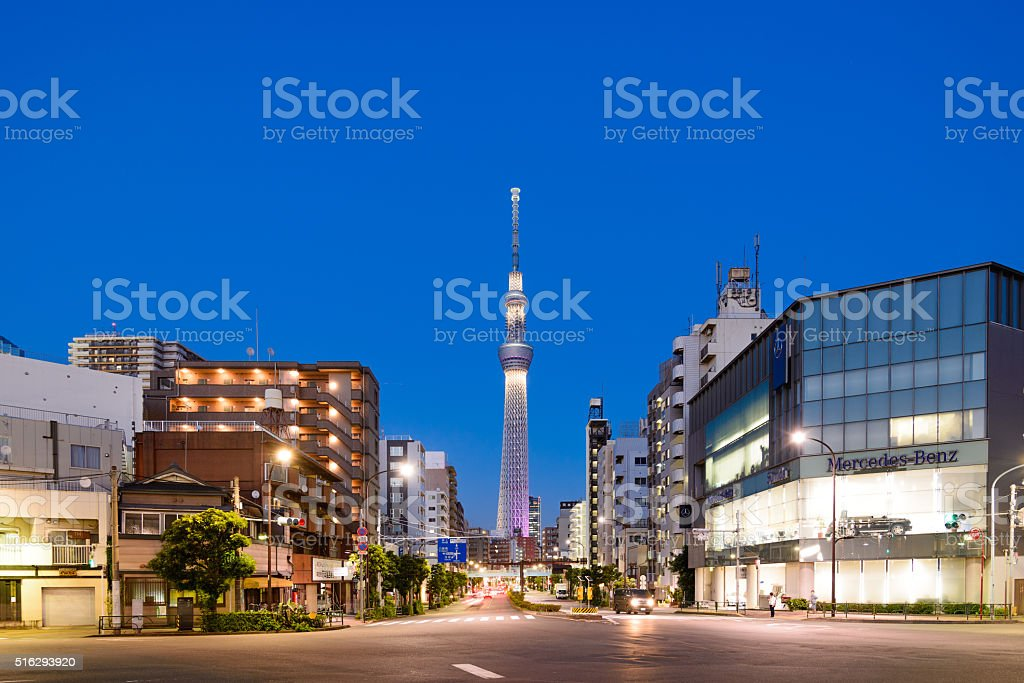 Tokyo Skyline in the Evening stock photo