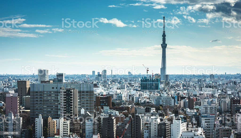 Tokyo skyline with the Sky Tree in the background stock photo