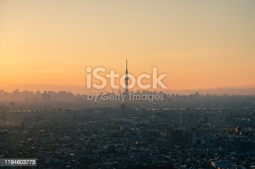 1131743616 istock photo Tokyo skyline with the view of Mount Fuji and Tokyo Skytree 1194603773