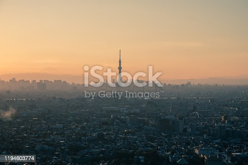 1131743616 istock photo Tokyo skyline with the view of Mount Fuji and Tokyo Skytree 1194603774