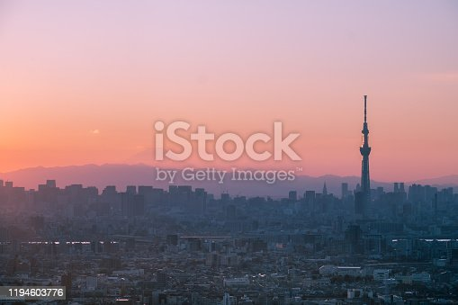 1131743616 istock photo Tokyo skyline with the view of Mount Fuji and Tokyo Skytree 1194603776