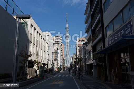 Tokyo, Japan - November 21, 2018 : Tokyo cityscape with Tokyo Skytree in Tokyo, Japan. The Tokyo Skytree is the highest self-standing tower in the world.