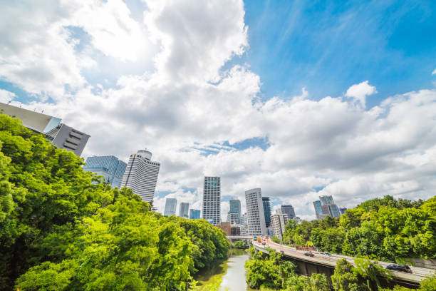 東京の空 - 緑 ビル ストックフォトと画像