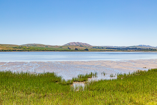 Looking out over Tomales Bay near Point Reyes in California, on a sunny summers day