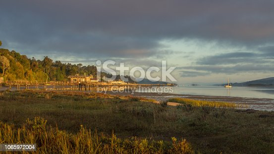 Sunset on the Tomalas Bay. Boats are on the water. Buildings and pier are out in the bay. The golden light is shining, Blue sky is showing through an opening in the sky. Plants are in the foreground.