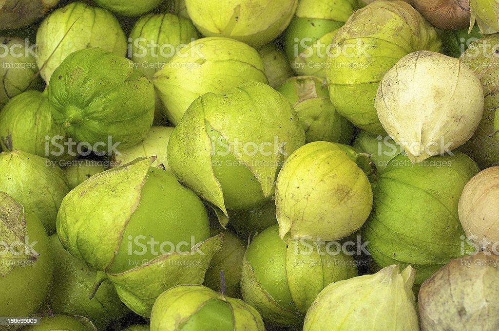 Tomatillo stock photo