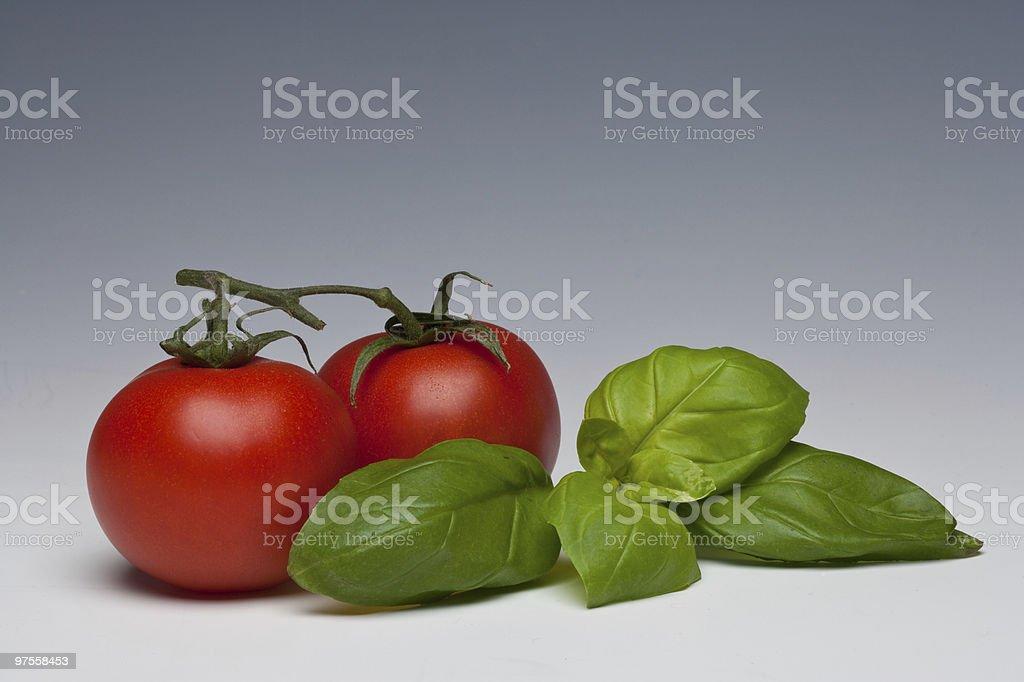 Herbes à la tomate et au basilic photo libre de droits
