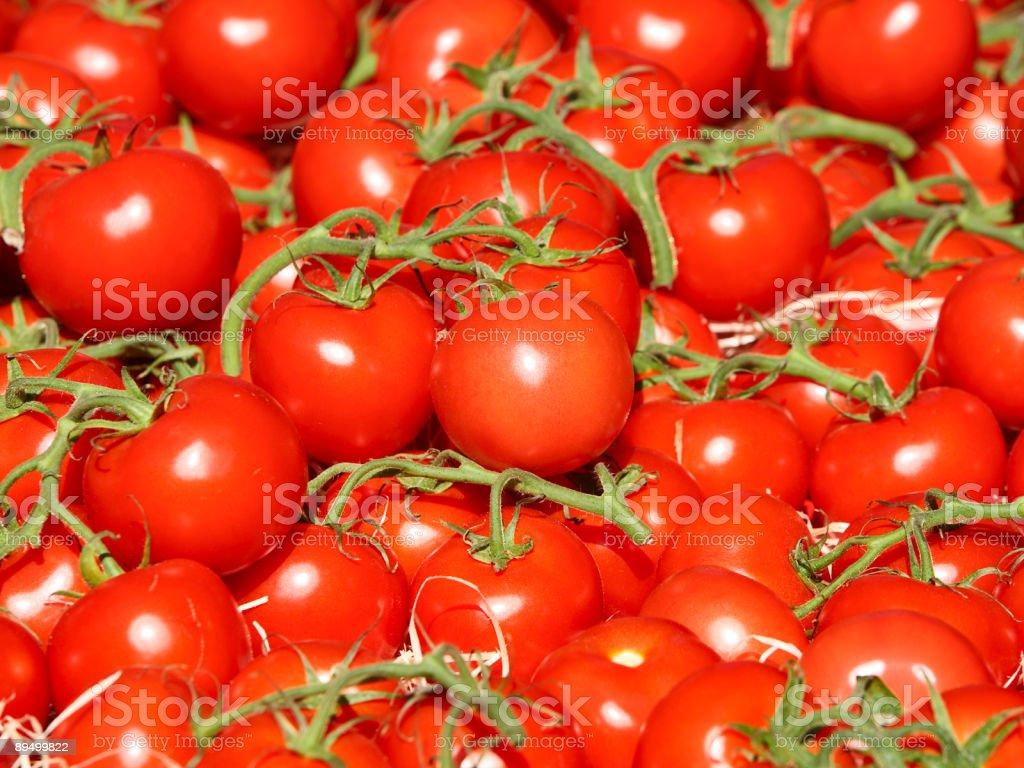 Pomidor tle zbiór zdjęć royalty-free