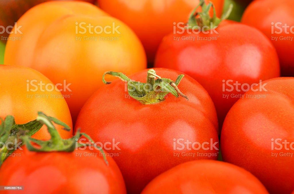 Tomato, close up royalty-free stock photo