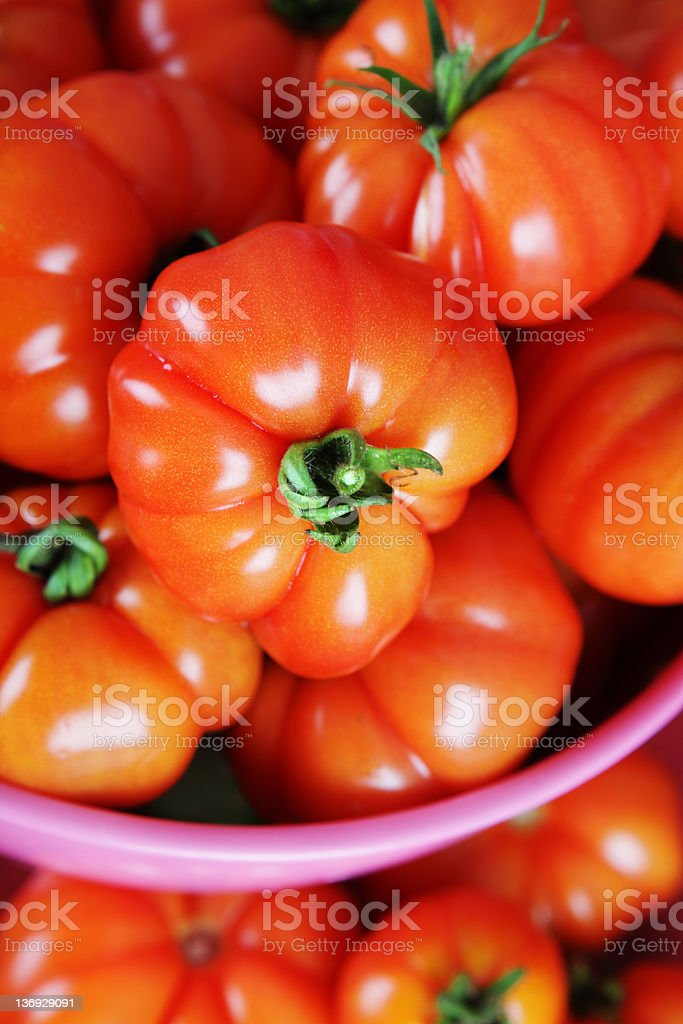 Tomato Harvest royalty-free stock photo