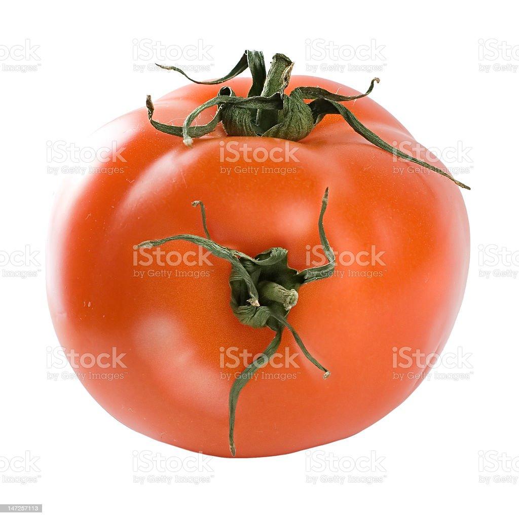 Tomato hybrid stock photo