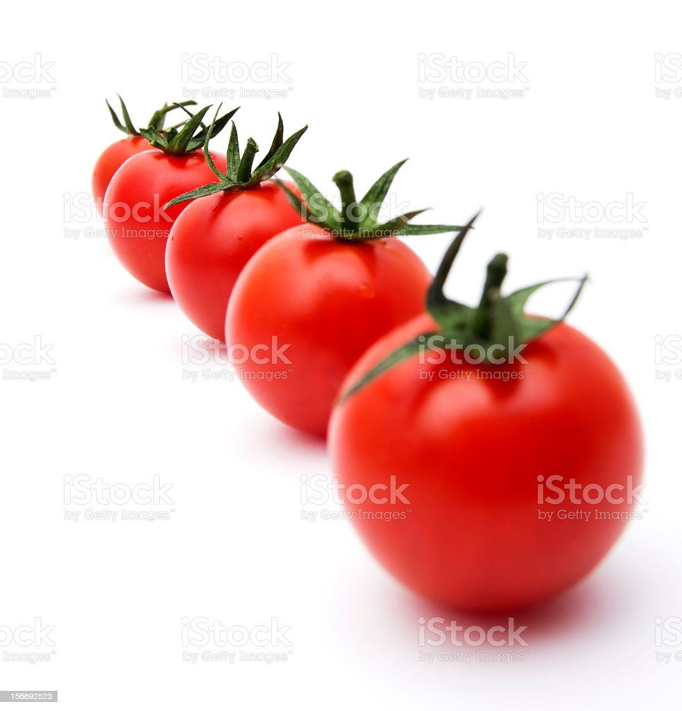 Tomato in a Row royalty-free stock photo