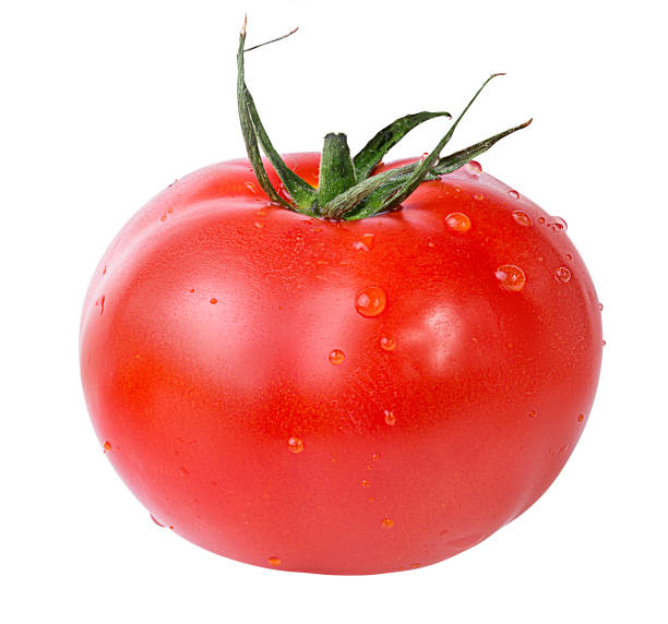 tomato isolated on white stock photo