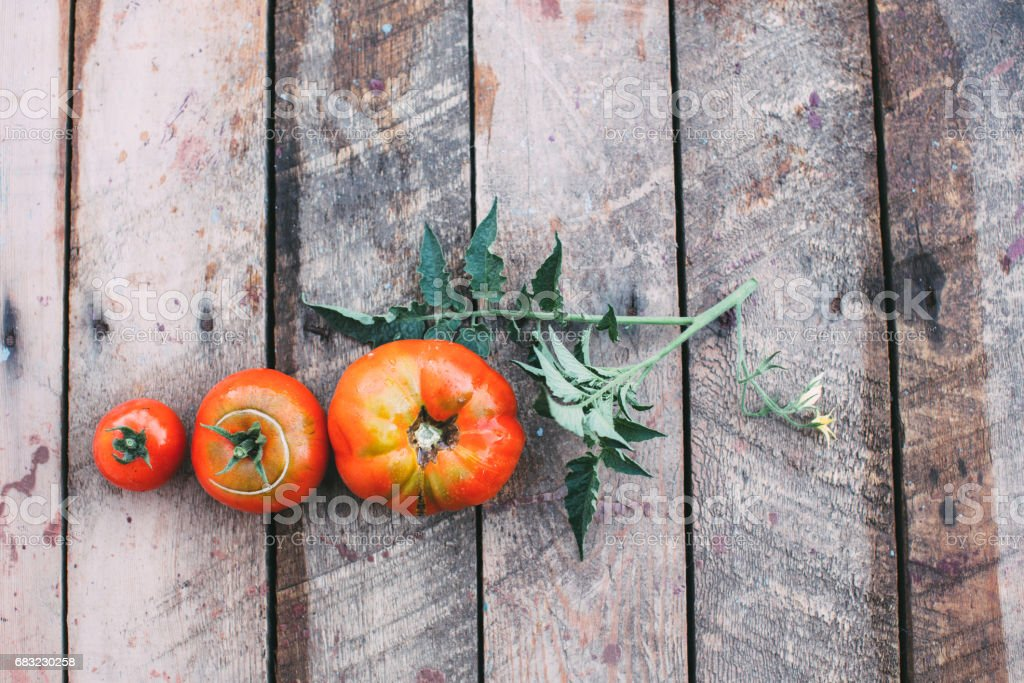 Tomato on old table. 免版稅 stock photo