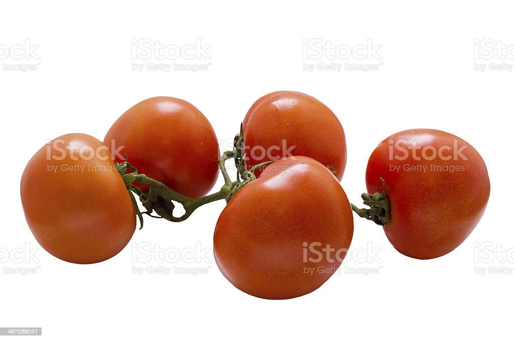 Tomato on white . royalty-free stock photo