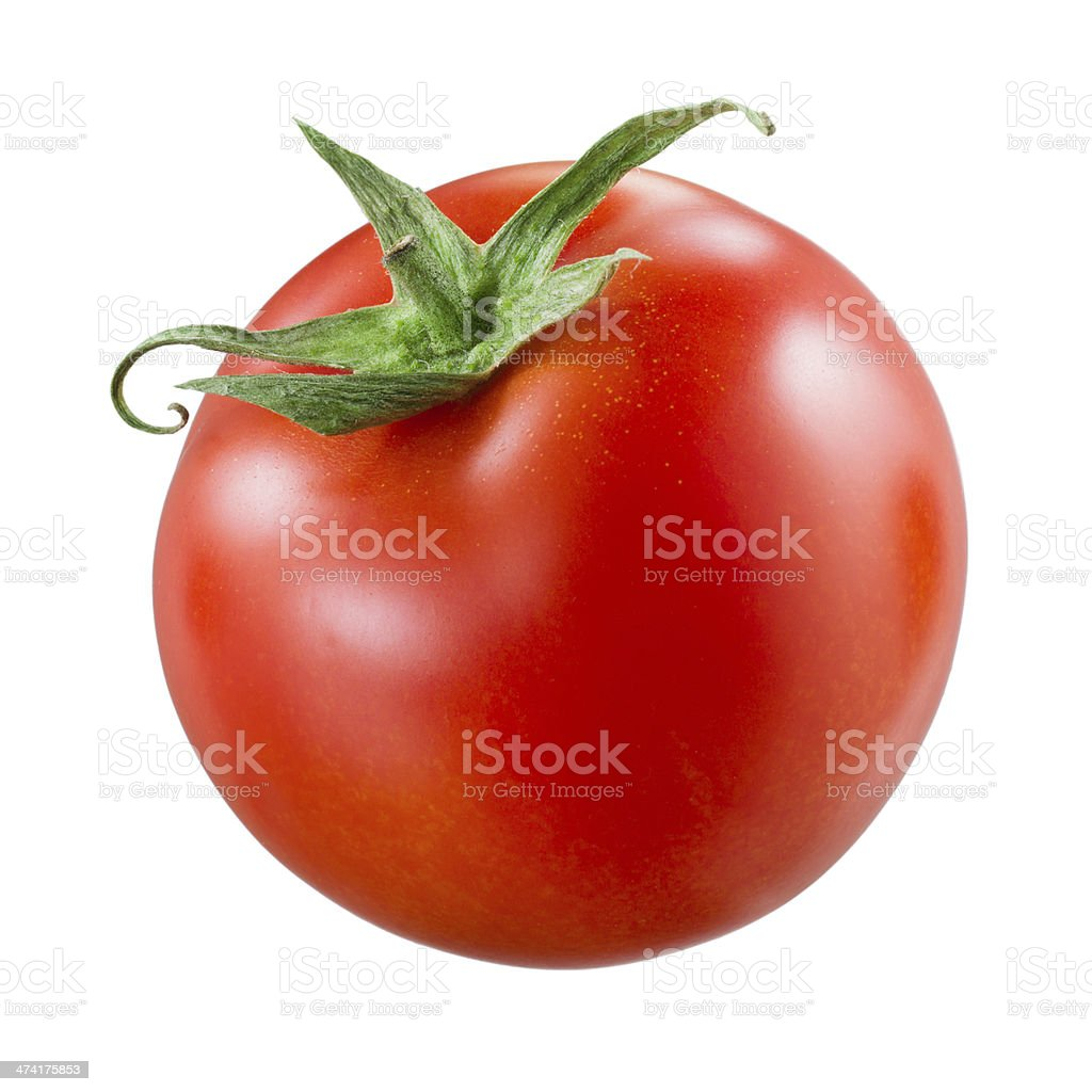 Tomato on white stock photo