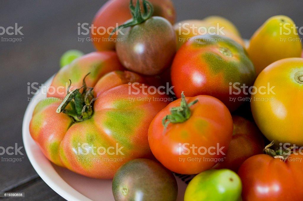 Tomato rarity – Foto