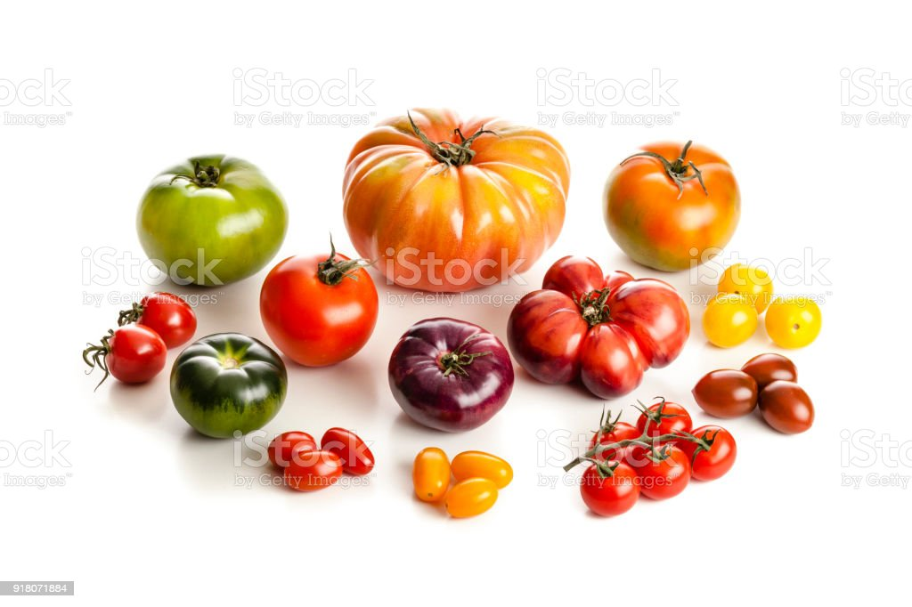 Tomato varieties isolated on white background stock photo