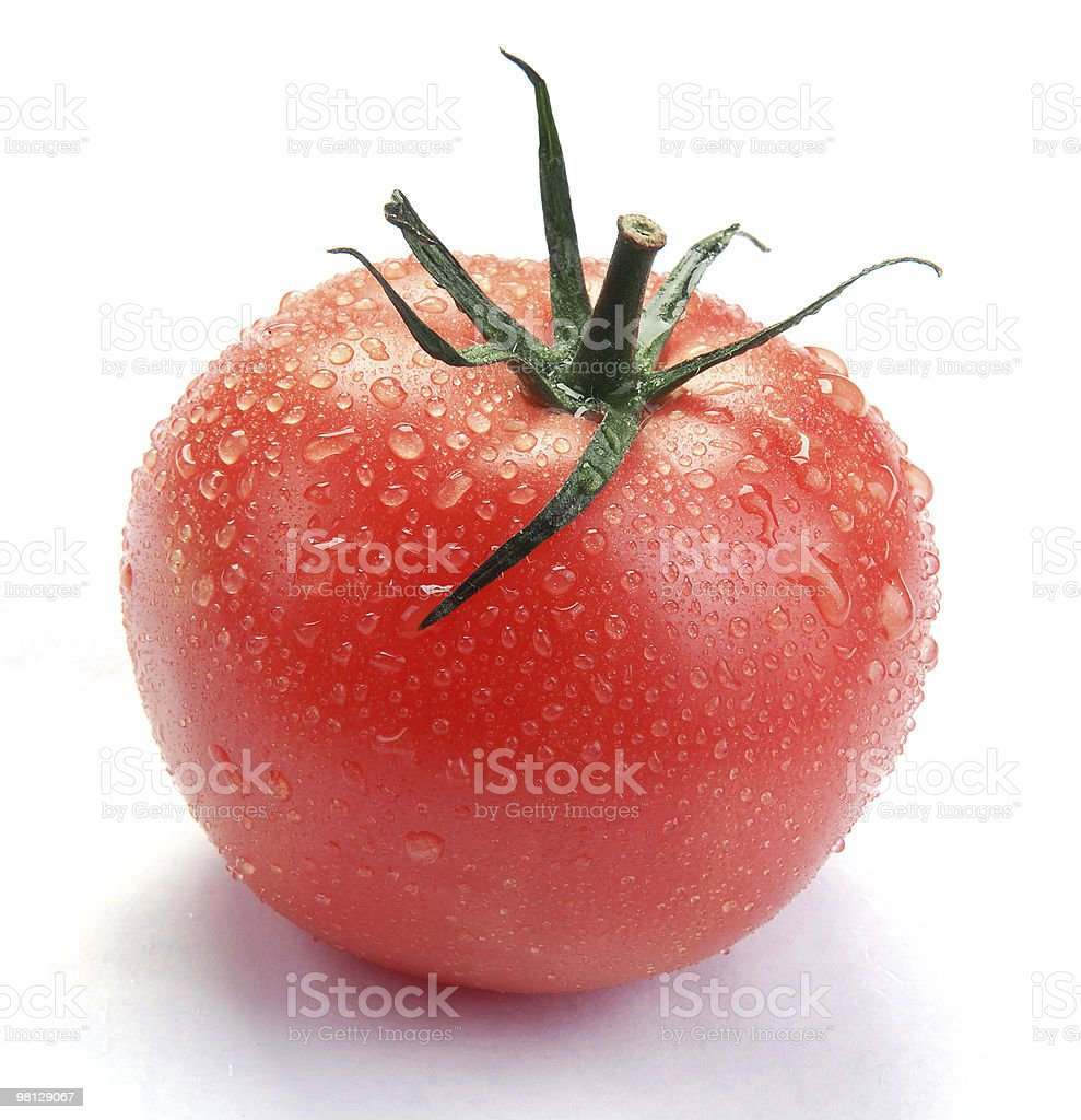 tomato with drops royalty-free stock photo