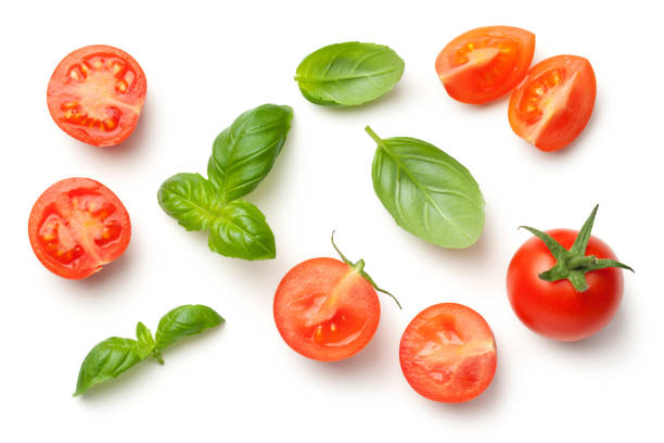 tomatoes and basil leaves isolated on white background - basil stock photos and pictures
